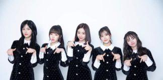 busters k-pop