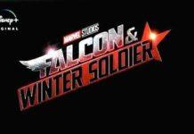 Falcão e Soldado Invernal