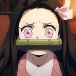 Demon Slayer Mugen Train Nezuko