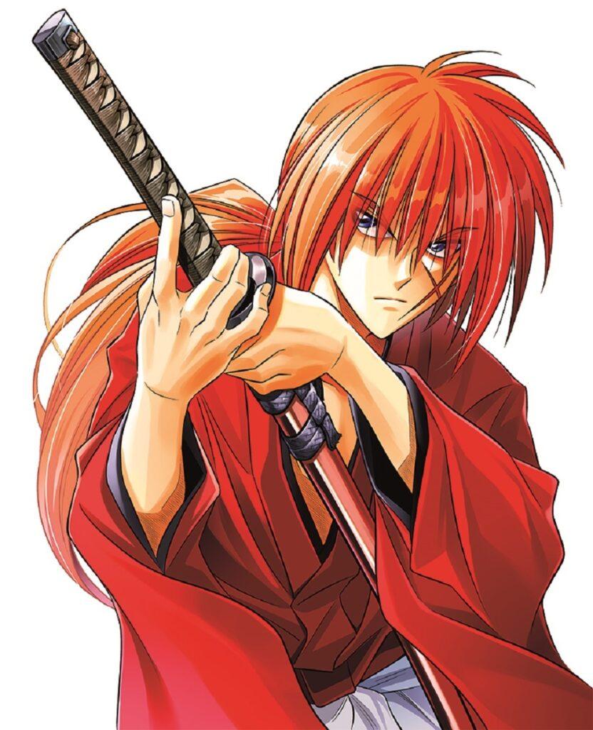 Samurai X Novel